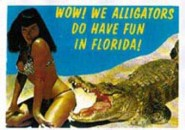 Poster DIN A3 - Bettie Page - Wow We Alligators