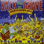 LP-2 - VA - Back From The Grave Vol. 8