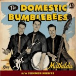 Single - Domestic Bumblebees - Mathilda; Summer Nights