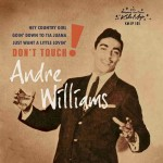 Single - Andre Williams - Don't Touch