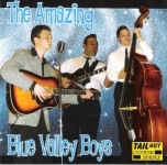 CD - Blue Valley Boys - The Amazing