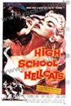 Poster DIN A3 - High School Hellcats