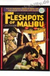 Poster DIN A3 - Fleshpots Of Malibu