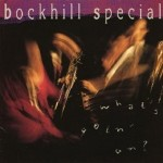 CD - Bockhill Special - What's Goin' On