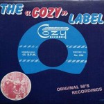 LP - VA - Cozy Label